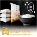 【ふるさと納税】 米 20kg 5kg×4 はえぬき 無洗米