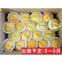 【ふるさと納税】8〜9月 「黄金桃」約5kg・秀〜優品15〜