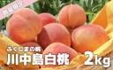 【ふるさと納税】【先行予約】No.0878 もも 川中島白桃