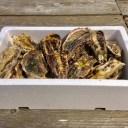 【ふるさと納税】魚介類 牡蠣 /能登かき 殻付 牡蠣 約3.5kg(約30個)専用ナイフ、片手用軍手付 ※加熱用※2022年(令和4年)1月中旬から順次発送