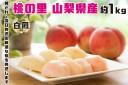 【ふるさと納税】2022年発送 山梨県産 完熟桃 白鳳系 約