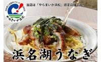 【ふるさと納税】浜名湖うなぎ(SF11)刻みうなぎ10食+お