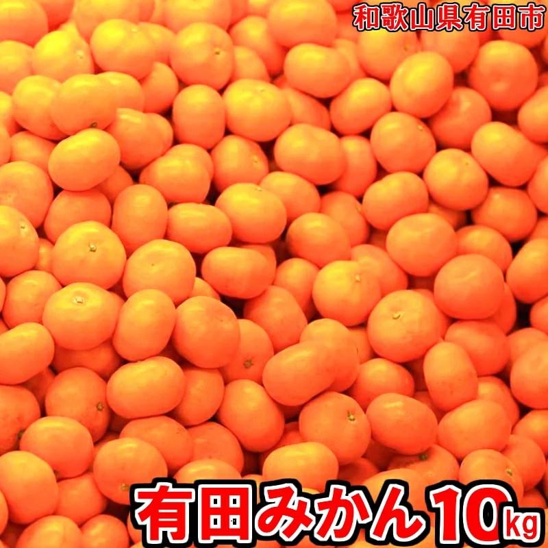 【ふるさと納税】有田みかん「未来への虹」10kg 送料無料 産地直送 フルーツ 果物 てんこ盛り て