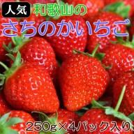 【ふるさと納税】(人気)和歌山産さちのかいちご約250g×4