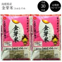【ふるさと納税】 BG無洗米 金芽米 [定期] きぬむすめ