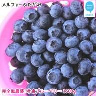【先行予約】完全無農薬栽培 完熟ブルーベリー1500g(冷凍