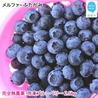 【先行予約】完全無農薬栽培 完熟ブルーベリー2.5kg(冷凍