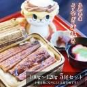 【ふるさと納税】 高知県産 うなぎ蒲焼き 100〜120g