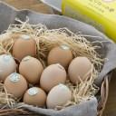 【ふるさと納税】[1178]放し飼い土佐ジローの卵 50個入り