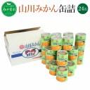 【ふるさと納税】山川みかん缶詰 5号缶×24缶 缶詰 かんづ
