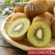 【ふるさと納税】A260.九州・福岡フルーツ王国より直送.人