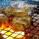 【ふるさと納税】地鶏天草大王 バラエティセット(もも肉 ムネ