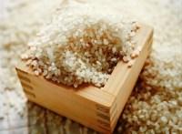 【ふるさと納税】とがずに炊ける大分県産無洗米ひのひかり5kg