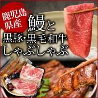 【ふるさと納税】【贅沢3種盛】うなぎ蒲焼と黒毛和牛・黒豚しゃ