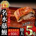 【ふるさと納税】生産量日本一!鹿児島県産うなぎ蒲焼 名水慈鰻