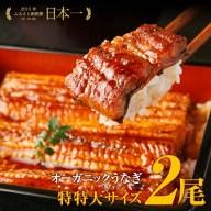 【ふるさと納税】【数量限定】泰正オーガニック(横山さんの鰻)