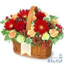 花キューピット【クリスマスフラワー】クリスマスのハーモニーバスケットmm00-512272 プレゼント ギフト お祝い 誕生日 感謝 記念日 Xmas