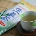 メール便対応 国産 生姜茶 (20g×6) まるも 高知県産大生姜 国産