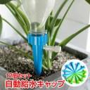 自動給水キャップ 12個セット 水やり 自動給水器 自動散水 ガーデニング 園芸 じょうろ 植物 花 ny137