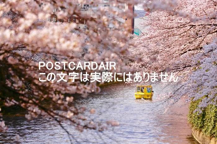 【日本の風景ポストカード】東京桜が満開の目黒川沿い風景 はがきハガキ葉書 pho