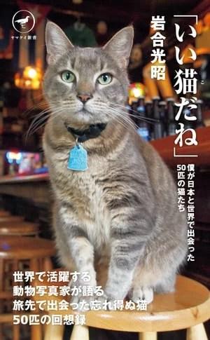 ヤマケイ新書 「いい猫だね」 僕が日本と世界で出会った50匹の猫たち【電子書籍】