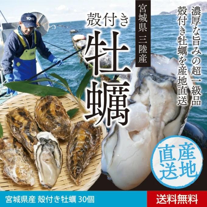【送料無料!】宮城県産 殻付き牡蠣 30個【特大サイズ】【送