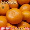 【送料無料】和歌山県産 下津みかん(しもつみかん)秀品 Lサイズ 10kg