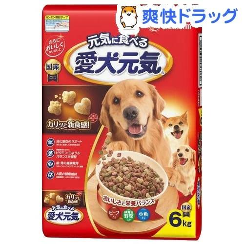 愛犬元気 全成長段階用 ビーフ・緑黄色野菜・小魚入り(6kg)【愛犬元気】