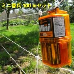【ブドウのハクビシン対策】被害を防ぐための電気柵の設置方法を解説 40