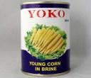 玉米筍M 21〜25本【ヤングコーン水煮 ホール】540g/1缶詰業務用食材
