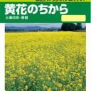 タキイ種苗 緑肥 種 緑肥からしな(シロカラシ) 黄花のちから