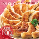 餃子 100個 ポイント消化 お試し 冷凍食品 訳あり お取
