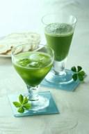 【夏限定】八女抹茶が薫る夏に冷たくしておいしいグリーンティー
