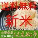 【新米29年産】 はえぬき 30kg 送料無料 本場山形の 1等米【玄米】食味ランキング22年連続特Aのこめ/コメ