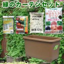 eco&ecoウインプランター深55型ゴーヤ栽培緑のカーテンセット 【深型プランター・家庭菜園 ガーデニング 】