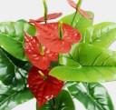 美々杏鉢植えフェイクフラワー 人工観葉植物 アンスリューム 赤が映える インテリア 飾り クリスマスカラー お祝い プレゼントに最適(赤)