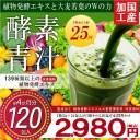 5個セット 国内工場生産 酵素青汁 24包×5個 120包入 4ヶ月分 美容健康 ダイエット 青汁 大麦若葉 ヘルシー 【 送料無料 】
