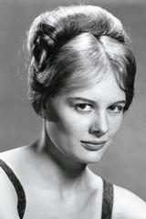 profile image of Shirley Knight