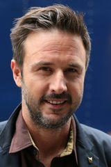 profile image of David Arquette