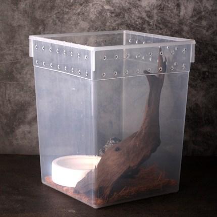 코코넷 반투명 세로형 파충류 사육장, 1개
