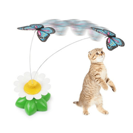 리다 오토매틱 버터플라이 고양이 장난감, 랜덤 발송, 1개