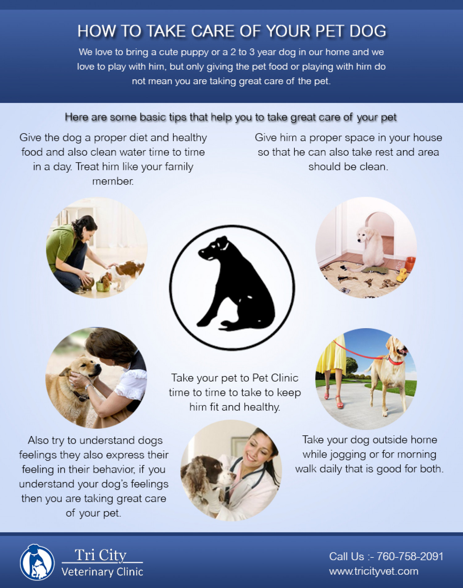 How To Take Care Of Your Pet Dog