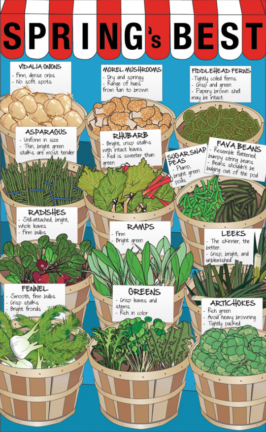 Spring Produce: Your Guide to Picking the Best