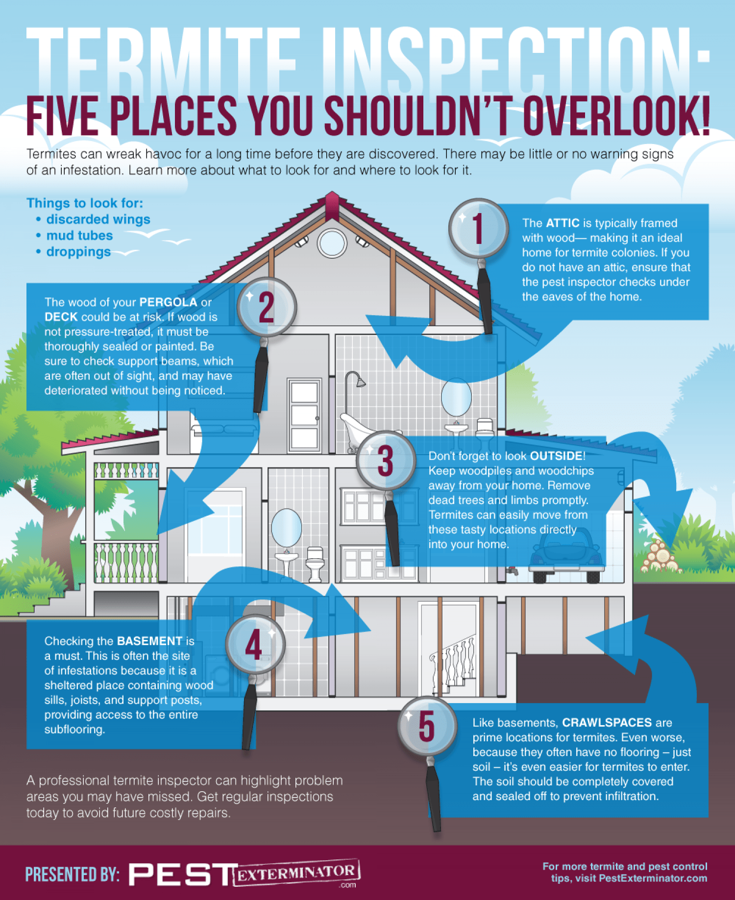 Termite Inspection Five Places You Shouldn T Overlook