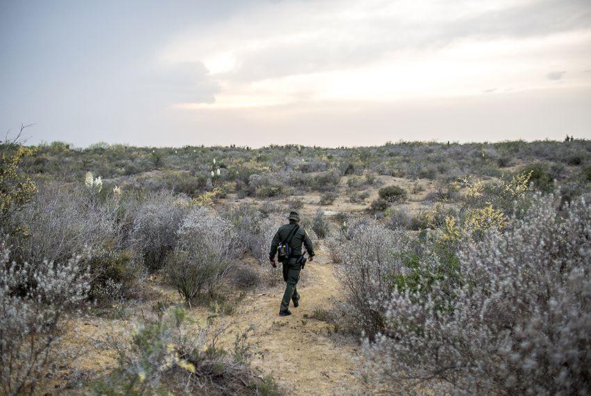 A Border Patrol Agent makes his way through harsh terrain along the Rio Grande River in Starr County, Texas.