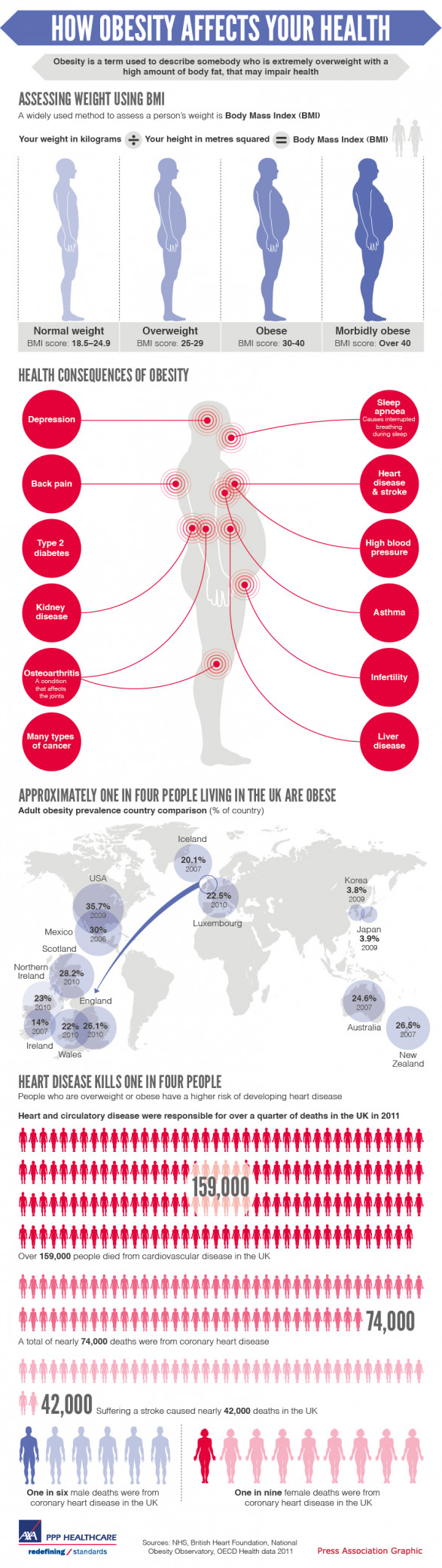 How Obesity Affects Your Health