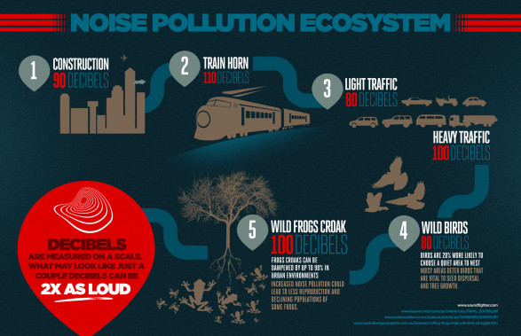 The Noise Pollution Ecosystem