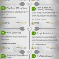The Top-30 WordPress Plugins, an Infographic from The Daily Egg