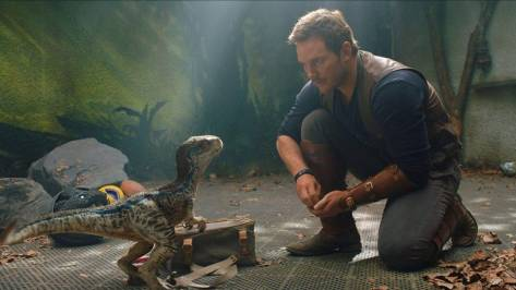 Chris Pratt & Blue in Jurassic World 2: Fallen Kingdom