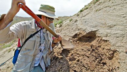 How the Geologic History of the Earth Provides Clues for Our Future